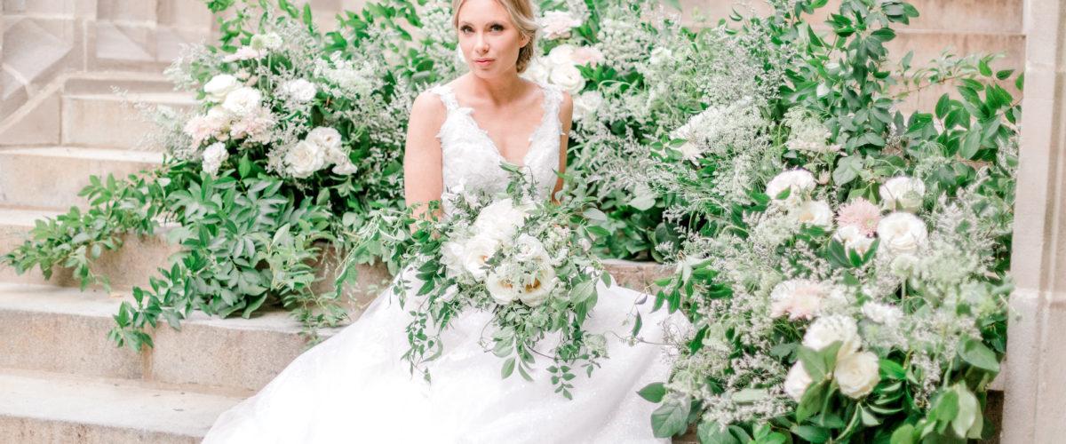 Bridal Veils- Updated Nov pictures