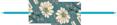 hr-flower